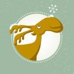 Advent_Quadrat_2012