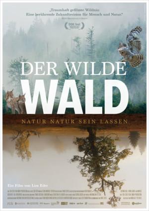 Der Wilde Wald – Natur Natur sein lassen